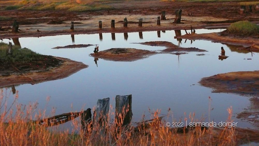 Napa-Sonoma Marshes, Napa County, CA