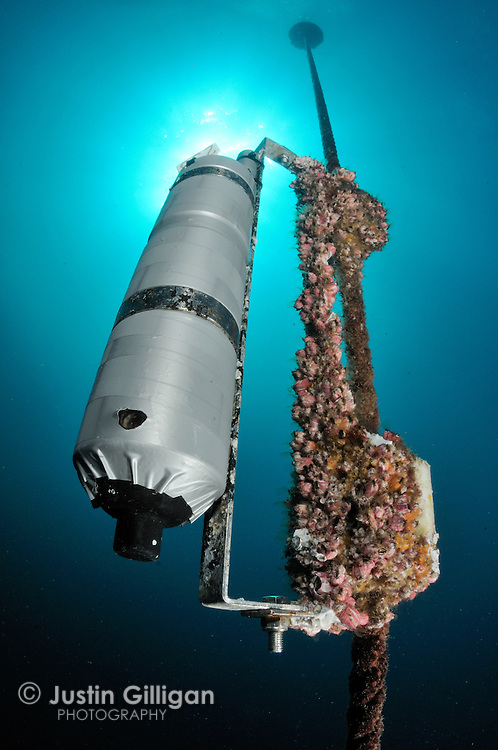 Acoustic listening stations are used in shark movement studies, they store data when a tagged sharks swims within 500m of the station, which are stratiegically positioned throughout the shars distribution, photographed off New South Wales, Australia, Pacific Ocean.