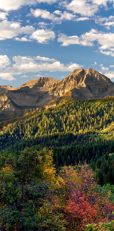 A cool early Fall morning in American Fork Canyon looking out onto the back of Mt. Timpanogos and some early Fall colors in the trees.