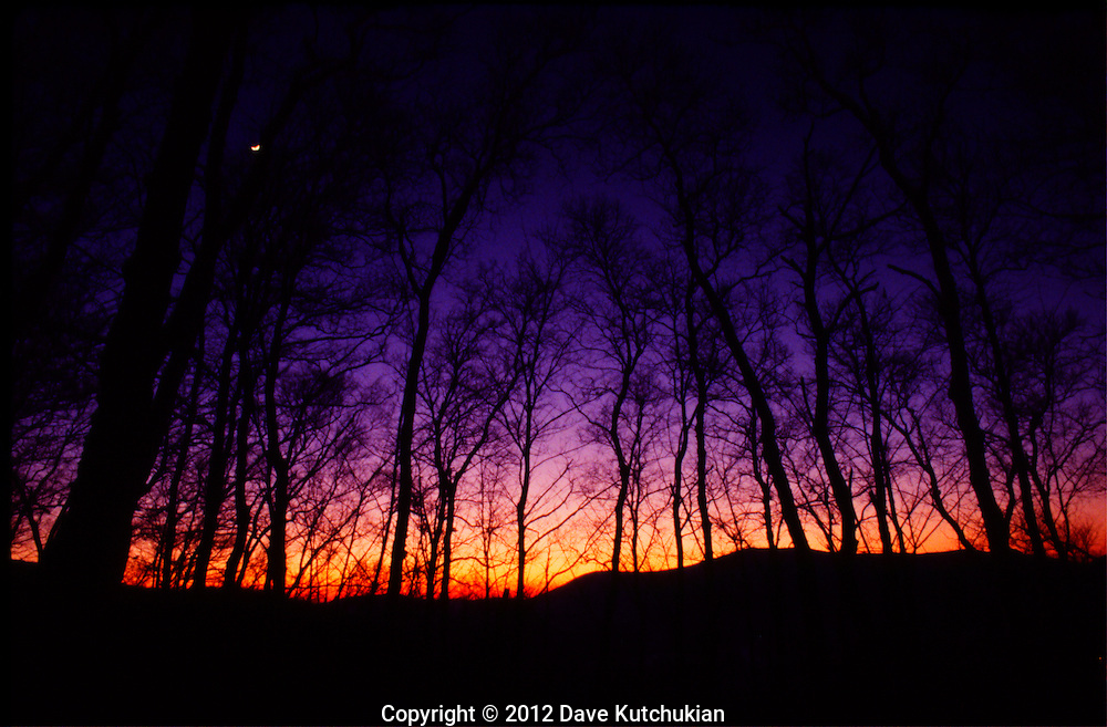Dusk on a cold night, a fabulous suset with the moon peeking through the trees. Got off my snowmobile and set up to shoot what I saw
