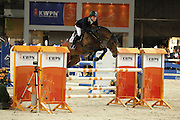 Willem Greve - Bernini<br /> KWPN Hengstenkeuring 2012<br /> © DigiShots