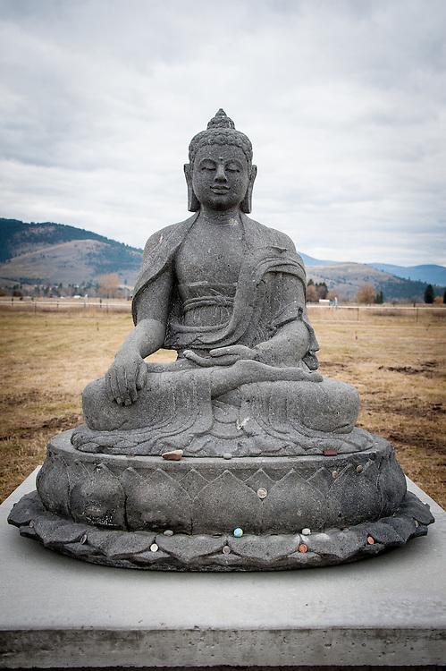 Garden of 1000 Buddhas