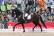 Becky Moody - Carinsio<br /> FEI World Breeding Dressage Championships for Young Horses 2012<br /> © DigiShots