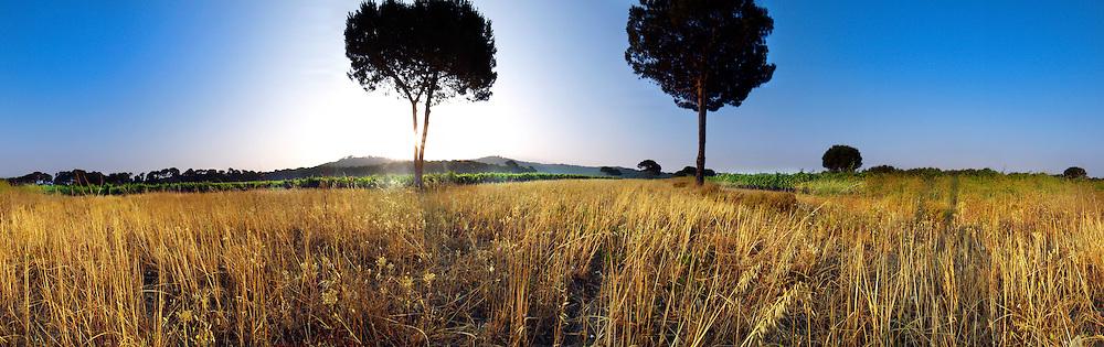 Les terres du Domaine de La Courtade
