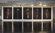 The bare bones of a relationship: Artists use X-rays to take haunting photographs of couples in an embrace<br /><br />Macabre yet strikingly beautiful images of skeleton couples have been produced by two Japanese art students.<br /><br />Ayako Kanda and Mayuka Hayashi used a CT scanner and X-ray machine to photograph four couples in intimate embraces - but the results are not in the least bit cuddly.<br /><br />While the photographs might be a simple extension of medical X-rays, they paint an intimate yet eerie picture of human relationships.<br />The students, from Musashino Art University, Japan, said: 'X-ray images usually show the finite nature of our bodies composed only of matter.'<br /><br />'But these couples' portraits reveal a pulse that isn't normally seen.'<br /><br />The duo won a prize in the recent Mitsubishi Chemical Junior Designer Awards for their stark compositions according to Japanese art and culture blog, Spoon & Tamago.<br /><br />They explained on the Mitsubishi Chemical awards website that they wanted to 'eliminate the information of two people,' and get to the bare bones of a relationship, highlighting the 'pulse' between a couple.<br /> The artists didn't want to dwell on sentiment like more traditional portraits.<br /><br />Many couple-centred photographs focus on the way two lovers look at each other,but in this new installation, they concentrated solely on the position of the bodies.<br /><br />While the pair are not the first to exploit X-ray machines for art they were interested in the way bones 'overlap' between the two transparent bodies.<br /><br />The artists added that the images manage to be both familiar and unusual and are perhaps  compelling because they strip away all the individual characteristics of couples to dwell on the mechanics of the human body.<br />©Ayako Kanda and Mayuka Hayashi/Exclusivepix