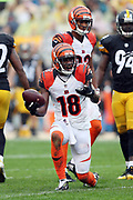 Cincinnati Bengals wide receiver A.J. Green (18) complains to officials while lobbying for a pass interference penalty call after running a pass route during the 2016 NFL week 2 regular season football game against the Pittsburgh Steelers on Sunday, Sept. 18, 2016 in Pittsburgh. The Steelers won the game 24-16. (©Paul Anthony Spinelli)