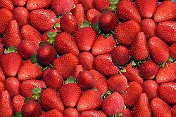 July 21, 2019 - Strawberries (Credit Image: © John Short/Design Pics via ZUMA Wire)