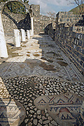 Israel, Sea of Galilee, Kursi, Gergesa, Byzantine monastery and mosaic floor the traditional site of Jesus' miracle of casting out the legion of demons into a herd of swine