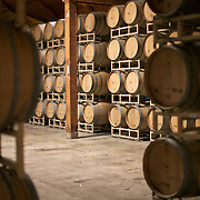 Ste. Michelle winery, Woodinville, Washington, oak barrels for aging and storing wine<br />