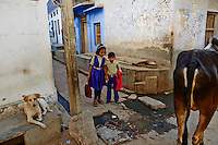 Inde, Rajasthan, village de Nimaj dans les environs de Jodhpur, ecolier // India, Rajasthan, Nimaj village around Jodhpur, schoolchidren