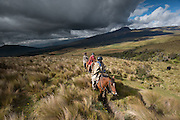 Horse riding in Ecuador's high altitude grasslands known as the Paramo.