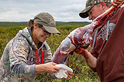 Heidi Anderson and Bernie McGowan place a caribou quarter in a game bag during Heidi's 2019 subsistence hunt in Alaska.