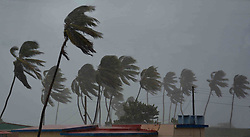 Sept. 9, 2017 - Palm trees struggle against strong wind at the Santa Lucia Beach in Camaguey of Cuba. Hurricane Irma continued to batter Cuba's northeast coast on Friday with strong wind and waves.  (Credit Image: © Str/Xinhua via ZUMA Wire)