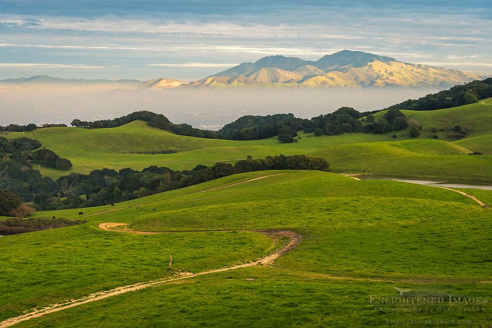 Mount Diablo from the Briones Crest Trail, Contra Costa County, California