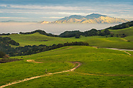 Mount Diablo from the Briones Crest Trail, Contra Costa County, California