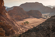 Sinai, Egypt, December 2018.  Naqb el Kohla pass while hiking with the Tarabin Tribe through the Sinai Desert Coastal Ranges. The Sinai Trail is Egypt's 1st long distance hiking trail, running 230km from the Gulf of Aqaba to the top of the Sinai's highest mountain. It connects old trade, travel and pilgrimage routes through one of the Middle East's most iconic desert wildernesses and is managed by a cooperative of three Bedouin tribes. Photo by Frits Meyst / MeystPhoto.com