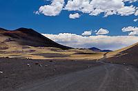 CAMINO NEGRO DE PIEDRAS VOLCANICAS ENTRE LA ESTEPA ESTEPA DE COIRONES (Festuca gracillima - fam. poaceas) Y CONOS VOLCANICOS, RESERVA PROVINCIAL LA PAYUNIA (PAYUN, PAYEN), MALARGUE, PROVINCIA DE MENDOZA, ARGENTINA (PHOTO © MARCO GUOLI - ALL RIGHTS RESERVED)