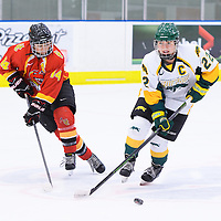 5th year defender Alexis Larson (22) of the Regina Cougars in action during the Women's Hockey Game on November 25 at Co-operators arena. Credit: Arthur Ward/Arthur Images
