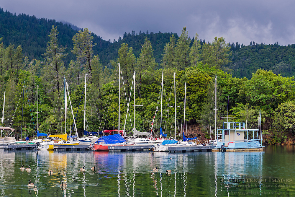 Sailboats docked at Whiskeytown Lake, Whiskeytown National Recreation Area, Shasta - Trinity National Forest, Shasta County, California