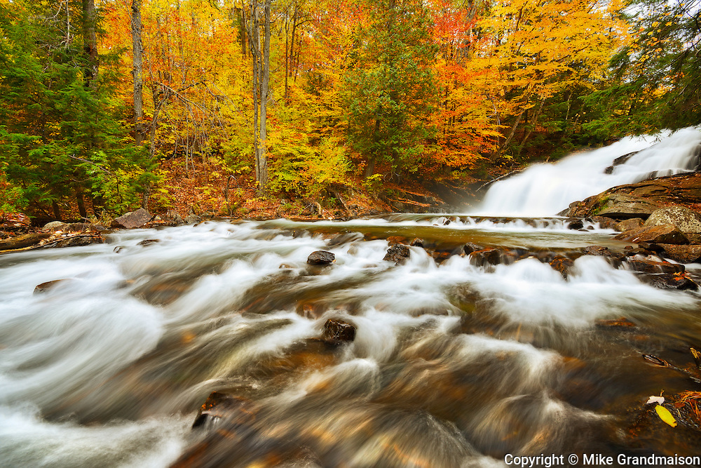 The Skeleton River at  Hatchery Falls in autumn<br /> Rosseau<br /> Ontario<br /> Canada