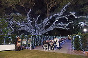 New Orleans Botanical Garden at City Park; Magic in the Moonlight 2012