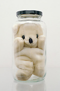 Stuffed bear in glass jar