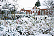 Snow covered plants and topiary in front of The Orangerie at Kensington Palace, London, UK