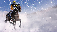 WHITE TURF HORSE RACING ON ICE.ST MORITZ.18-2-2007.X77493.Picture Bob Martin.RACE 1 GRAND PRIX CORPORATE EVENTS NEWMARKET RACECOURCES 1100METRES.SHIRAZ  RIDEN BY MARKUS KOLB..