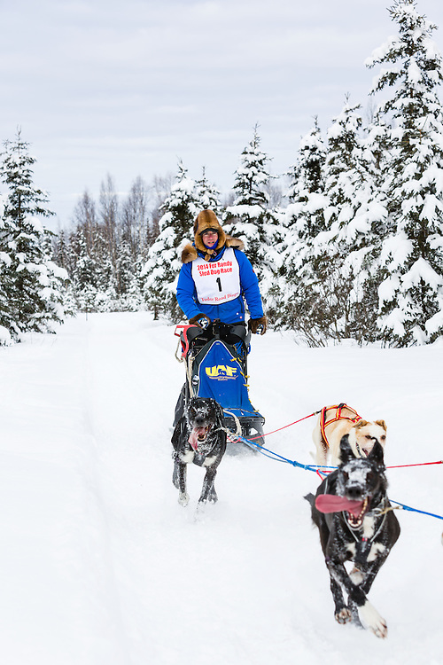 Musher Arleigh Reynolds competing in the Fur Rendezvous World Sled Dog Championships at Campbell Airstrip in Anchorage in Southcentral Alaska. Winter. Afternoon.