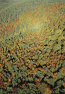 Autum foliage around Acumuer, Sabinanigo&amp;#xA;Pyrenees, Huesca, Aragon, Spain<br />