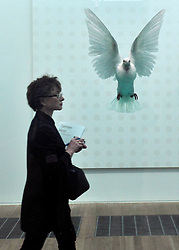 © Licensed to London News Pictures. 02/04/2012. London, UK. A woman walks past 'The Incomplete Truth 2006'. The Tate Modern presents the first substantial retrospective of British artist Damien Hirst. The exhibition runs 4th April - 9th September at Tate Modern London. Photographers Stephen Simpson/LNP