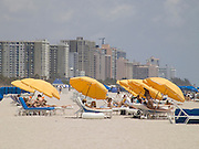 people laying on beach chairs Miami Beach USA
