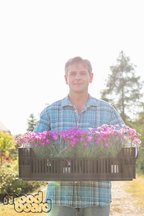 Portrait of man carrying crate with flower pots in garden