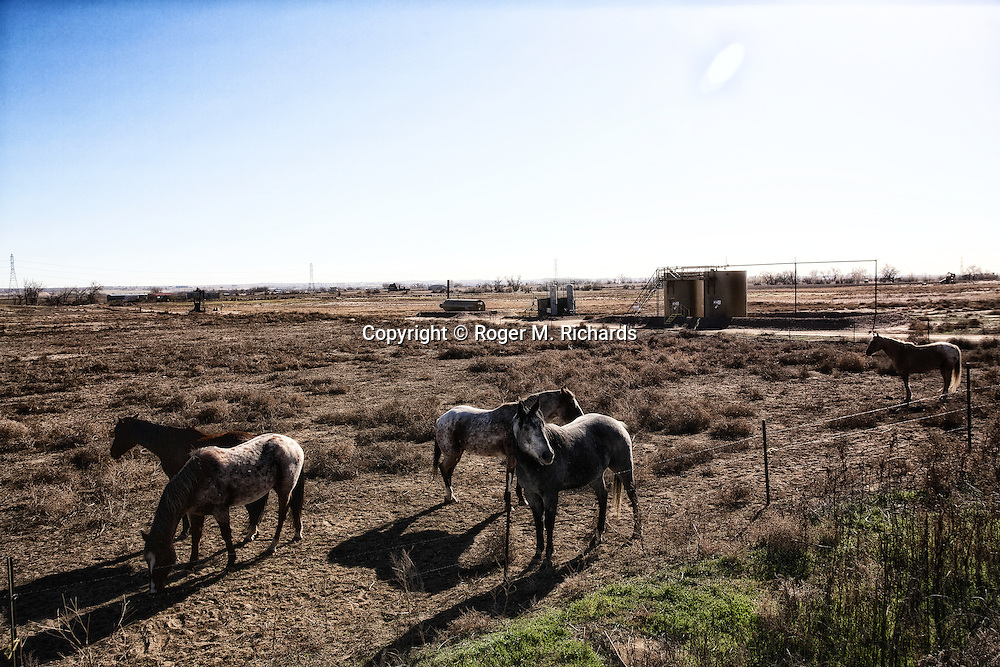 Horses graze near natural gas storage tanks in the high desert of Weld County, Colorado. A boom in oil and gas drilling across the American West has led to pollution and environmental problems in what were once pristine lands. Traveling rigs go from location to location, drilling down into the shale rock, and are soon followed by pumps that inject a toxic brew of water and chemicals for hydraulic extraction or 'fracking' of oil and gas. Photograph by Roger M. Richards