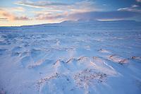 Winter on Holtavörðuheiði, Iceland.