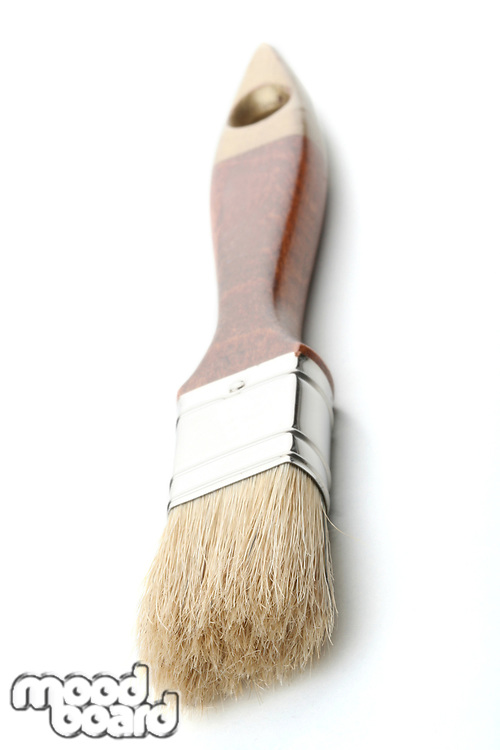 Paintbrush on white background - close-up