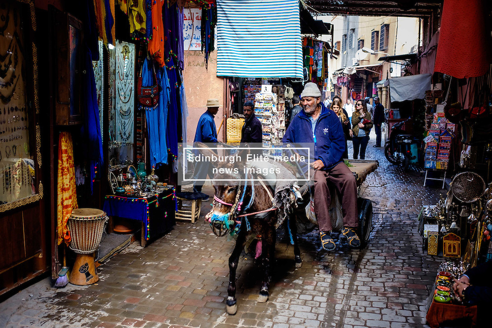 A man riding a donkey and cart through the medina in Marrakech, Morocco, North Africa<br /> <br /> <br /> (c) Andrew Wilson | Edinburgh Elite media