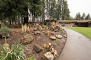 The Rice Museum of Rocks and Minerals features a large number of thundereggs, sunstones, gems, outstanding crystals, lapidary speciments and petrified wood. It's located in Hillsboro, Oregon, just outside of Portland in a mid-century home built by the original collectors.