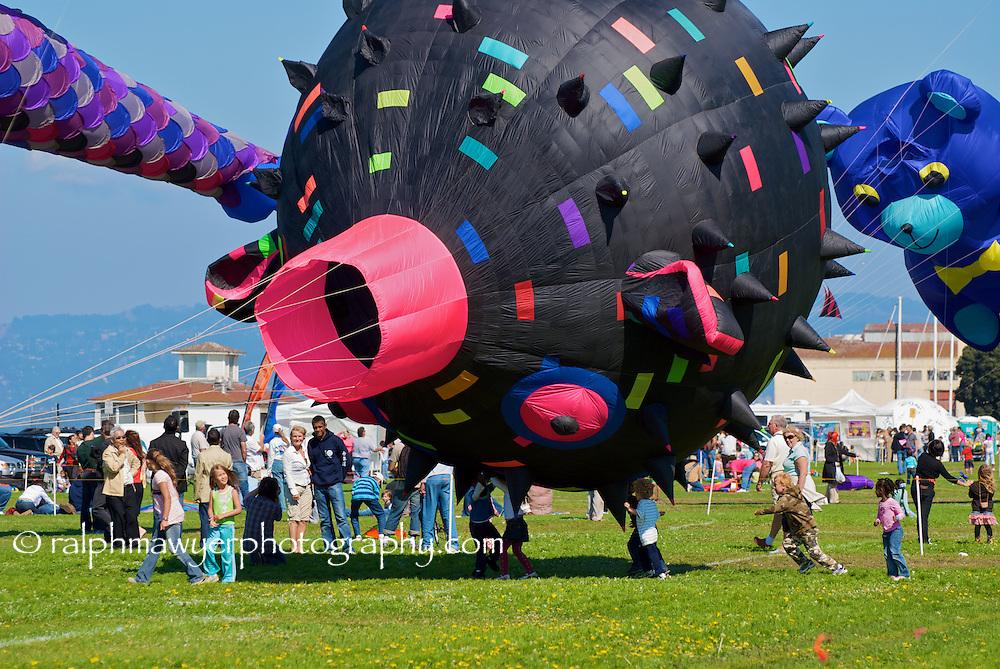 San Francisco Kite Festival