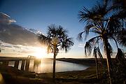 Tres Marias_ MG, Brasil...Coqueiros proximo ao rio Sao Francisco em Tres Marias, Minas Gerais...Coconutes-tree next to Sao Francisco river in Tres Marias, Minas Gerais...Foto: JOAO MARCOS ROSA / NITRO