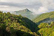 Blick auf den Monte San Giorgio, UNESCO Welterbestätte Monte San Giorgio, Tessin, Schweiz | Overlooking the Monte San Giorgio, UNESCO World Heritage Site Monte San Giorgio, Ticino, Switzerland