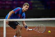 Mariusz Fyrstenberg of Poland while trening session four days before the BNP Paribas Davis Cup 2013 between Poland and Australia at Torwar Hall in Warsaw on September 09, 2013.<br /> <br /> Poland, Warsaw, September 09, 2013<br /> <br /> Picture also available in RAW (NEF) or TIFF format on special request.<br /> <br /> For editorial use only. Any commercial or promotional use requires permission.<br /> <br /> Photo by © Adam Nurkiewicz / Mediasport