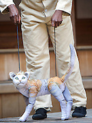 946: The Amazing Story of Adolphus Tips <br /> directed by Emma Rice at The Globe Theatre, London, Great Britain <br /> press photocall <br /> 16th August 2016 <br /> <br /> <br /> Nandi Bhebhe as Tips The Cat <br /> <br /> <br /> <br /> <br /> <br /> Photograph by Elliott Franks <br /> Image licensed to Elliott Franks Photography Services
