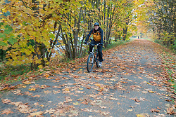 United States, Washington, Snohomish, man bicycling on path in fall.  MR