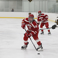 Women's Ice Hockey: St. Olaf College Oles vs. College of Saint Benedict Blazers