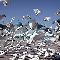 An Afghan man feeds doves in front of Mazar-e Sharif's famous 'Blue Mosque,' the Tomb of Hazrat Ali in Mazar-e Sharif, Afghanistan. July 2011.