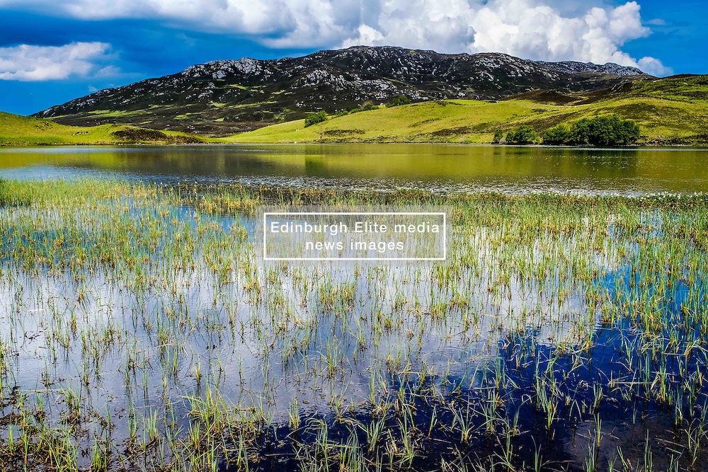 Loch Tarff, Inverness-shire, Scotland<br /> <br /> (c) Andrew Wilson   Edinburgh Elite media