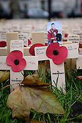 Cross placed remembrance of Drummer Lee Rigby from the Royal Regiment of Fusiliers, who was murdered outside the regiment barracks in Woolwich in May 2013.<br /> <br /> Westminister Abbey, November 11th 2013 <br /> <br /> Pictures by Zute Lightfoot