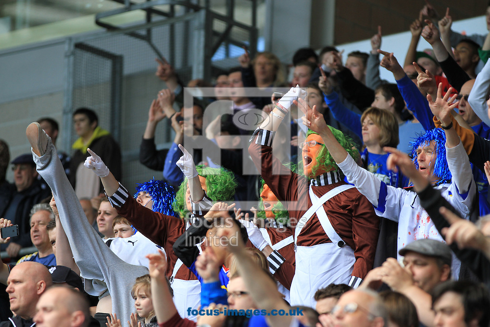 Picture by Richard Gould/Focus Images Ltd +447814 482222.04/05/2013.Cardiff City fans during the npower Championship match at the KC Stadium, Kingston upon Hull.