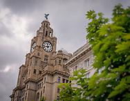 The Royal Liver Building, Pier Head, Liverpool, Britain